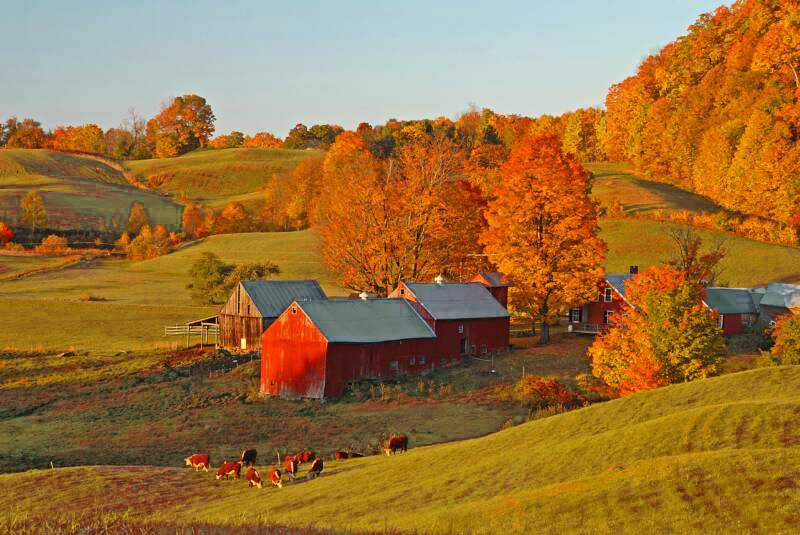 Early_Light_on_Jenne_Farm_-_Vermont_2008_op_800x535_mod.jpg